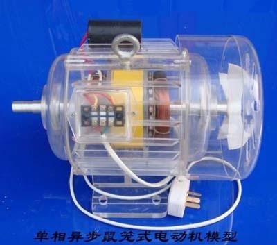 单相异步鼠笼式电动机模型
