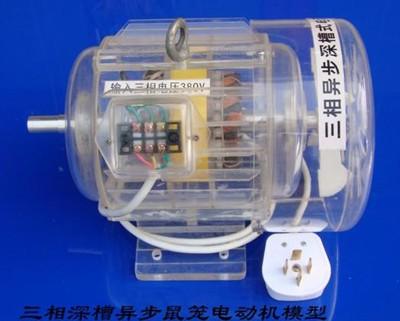 三相异步深槽鼠笼式电动机模型